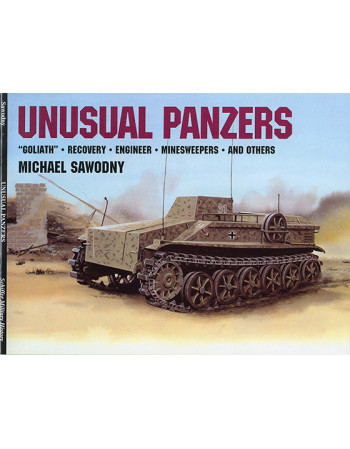 Unusual Panzers